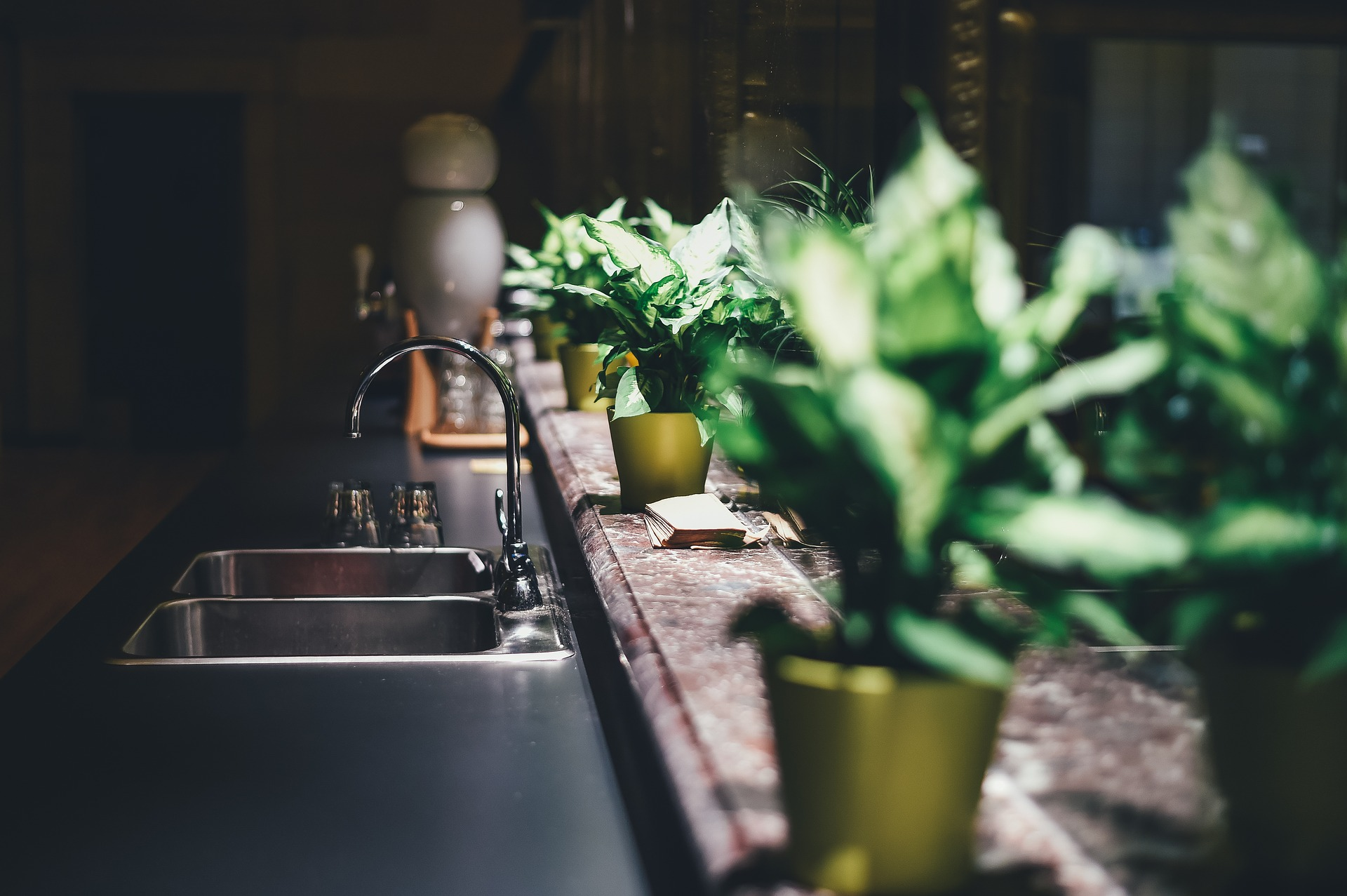Best kitchen faucet and a sink and a indoor plants